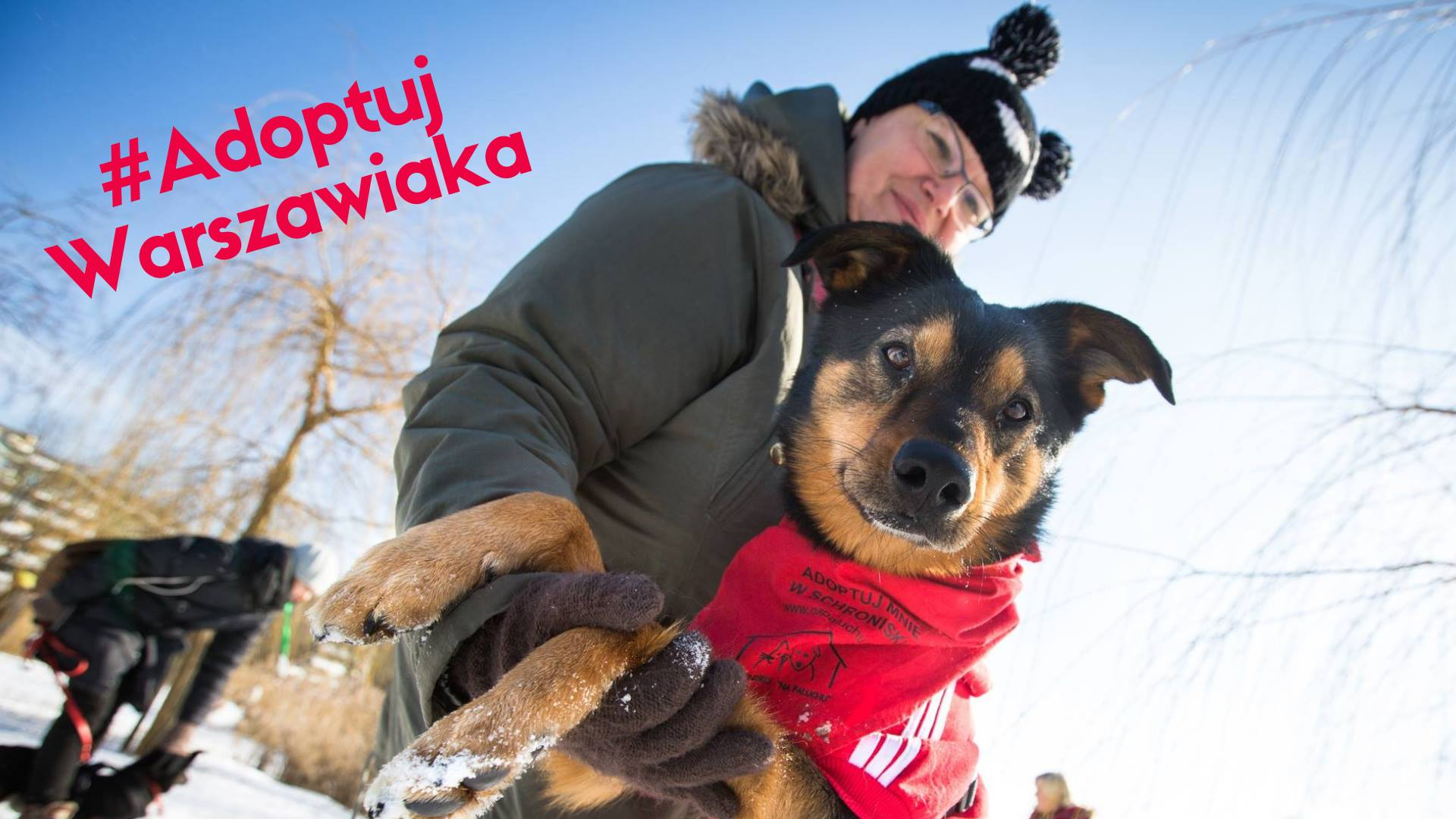 Adoptuj Warszawiaka 2019