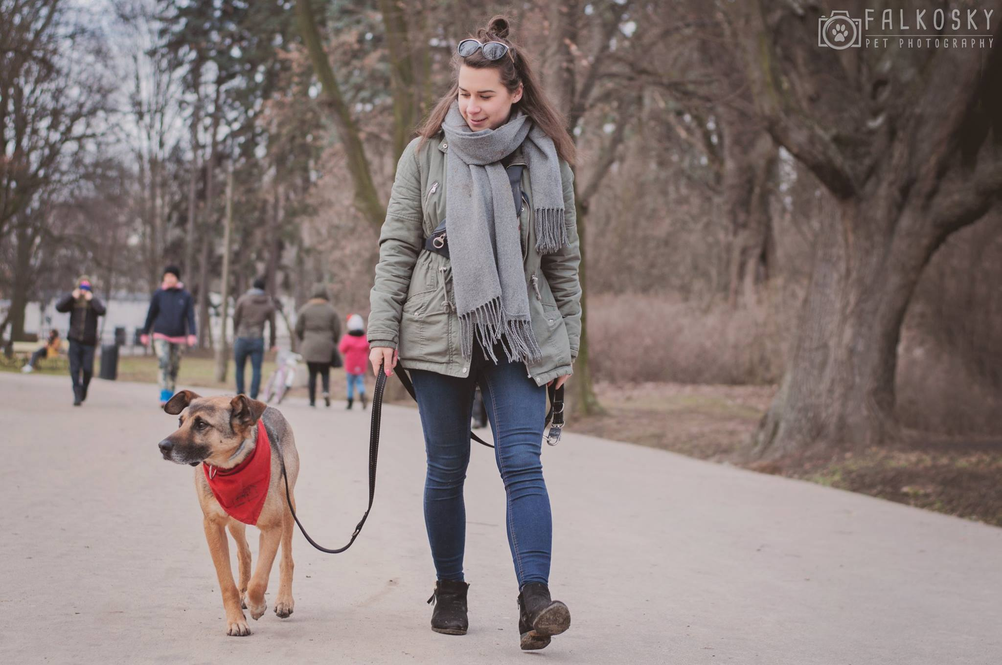 Jak powinien wyglądać prawidłowy spacer z psem?